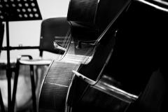 orchestra da camera_7